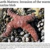 MLML's Ross Clark writes about marine heat waves in Santa Cruz Sentinel article