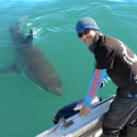 Repelling sharks to save them…and us! – March 22nd, 2018