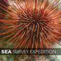 MLML Affiliates take part in the Salish Sea Survey Expedition