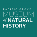 Dec. 12th Lecture on Seaweed by Jeffrey Hughey at the Pacific Grove Natural History Museum
