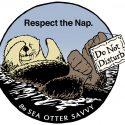 SJSU/MLML Research Affiliate Sea Otter Savvy featured in NBC story