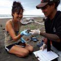 Vertebrate Ecology Lab student Sharon Hsu nominates Costa Rican sea turtle non-profit ASTOP for grant funding