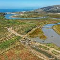 Professor Ivano Aiello collaborates with NOAA Fisheries on Butano Creek Restoration