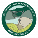 SJSU/MLML research affiliate Sea Otter Savvy organizes Sea Otter Awareness Week 2020