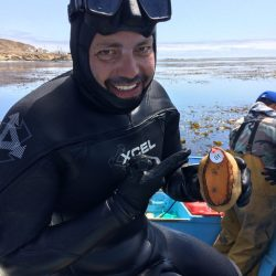 Virtual Seminar – Science without borders: tracking the tropicalization of kelp forests in the Californias – March 4