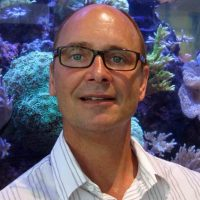 Virtual Seminar – The chemical ecology of sponges on Caribbean reefs: From metabolites to ecosystems – March 25