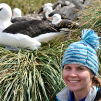 Virtual Seminar – Flying for free? Understanding the role of wind variability in albatross foraging energetics – April 15