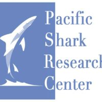 SJSU/MLML alumnus Justin Cordova '21 publishes paper describing new shark species