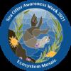 Sea Otter Savvy researchers organize Sea Otter Awareness Week 2021