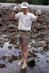 "Dr. Nybakken in ""full field trip mode"", with forceps on cord around his neck, field notebook on right hip, thermometer and Rapidograph pen in shirt pocket. Holding large Nemertean at Cruz Huanacaxtle, Nayarit, Mexico, 23 Jan 1975. Photo by Gary McDonald."